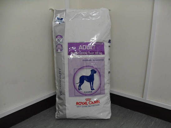 Picture of RCVCN ADULT GIANT DOG DRY