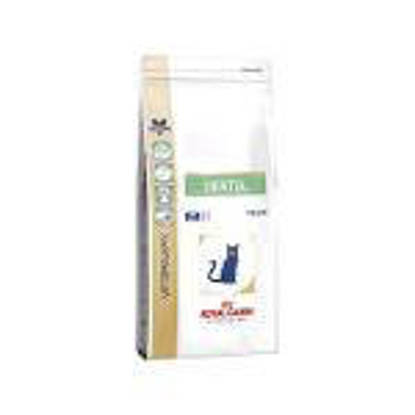 Picture of Royal Canin Cat Dental S/O 3kg